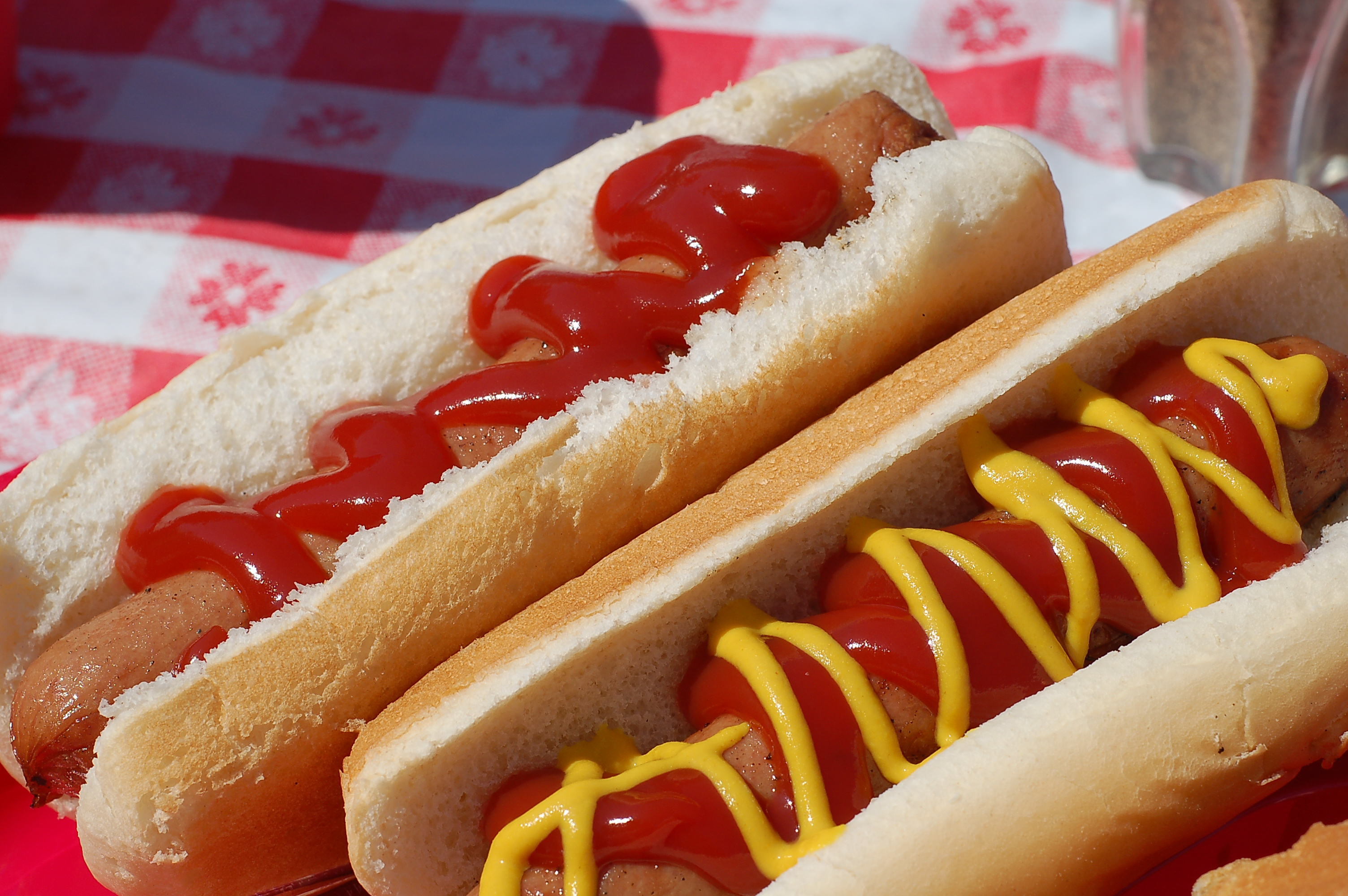 Is Hot Dog In The Same Family As Sausage